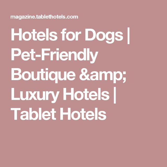 Hotels for Dogs | Pet-Friendly Boutique & Luxury Hotels | Tablet Hotels