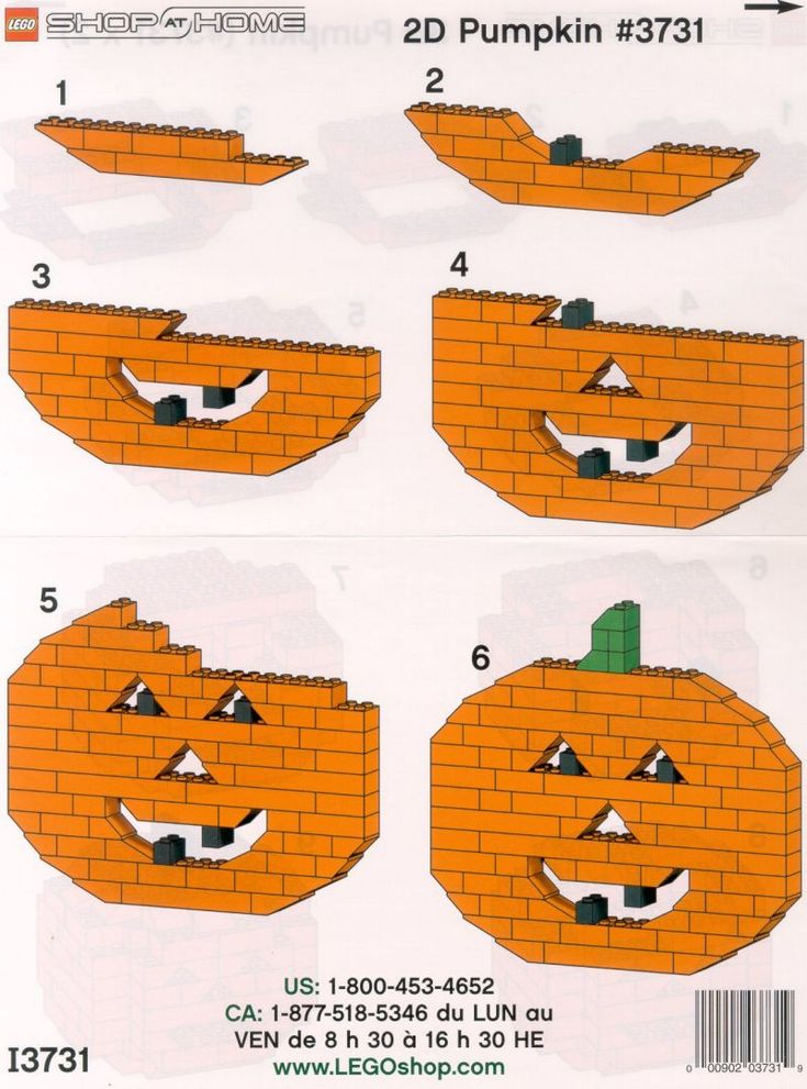 View LEGO instructions for Pumpkin Pack set number 3731 to help you build these LEGO sets