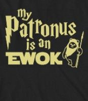 Gotta love anything that can mix Harry Potter & Star Wars.  Ewoks!!!