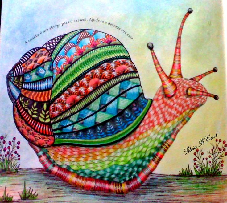 317 Best Adult Coloring Books For Relaxation Images On