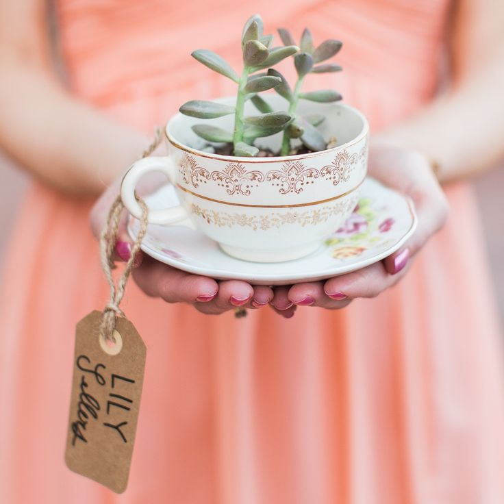 collect vintage teacups, plant a succulent in them and voila you have your wedding favor.  Captured by @rachelannphoto