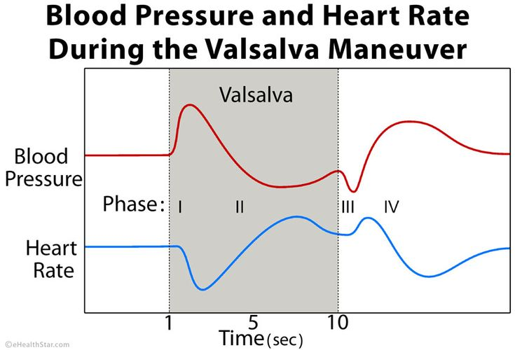 Valsalva maneuver blood pressure heart rate http://ehealthstar.com/test/valsalva-maneuver