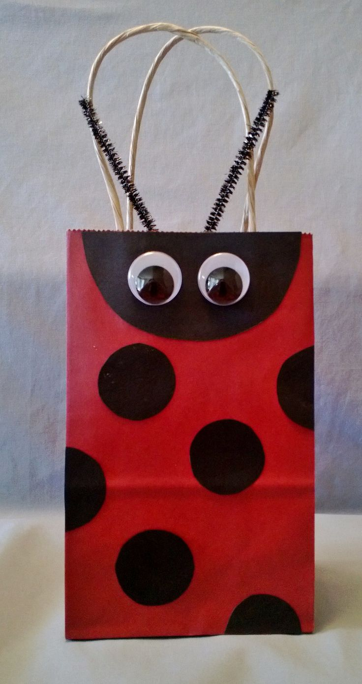 Lady Bug Party Favor Bag (Set of 12)   Perfect for any lady bug birthday or whimsical themed birthday parties or to just purchase for gift giving for someone special!