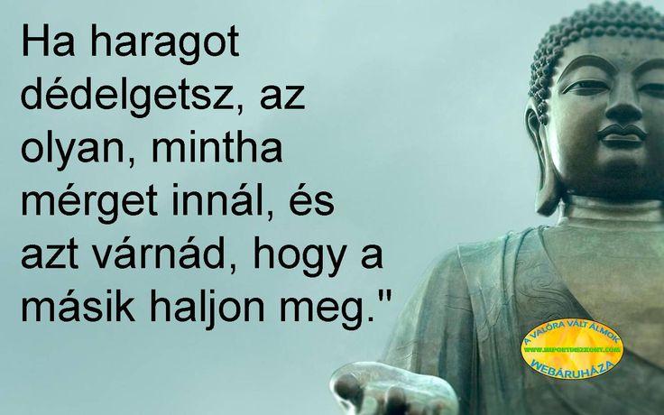 Buddha bölcsessége... ;-)