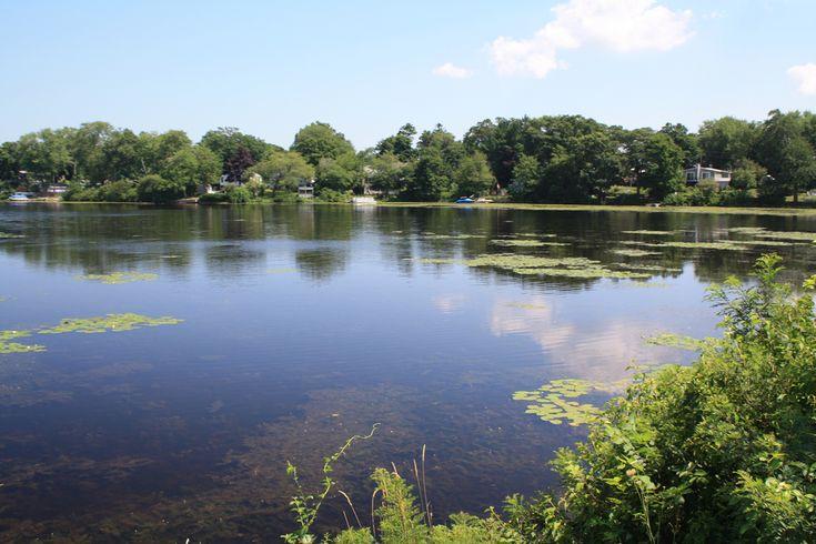 Vintage 1970s Polarizing Filter @ Whitman's Pond in Weymouth, MA. Filter 55mm: Vivitar (JAPAN)