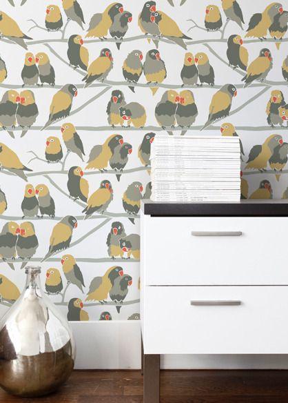147 best love birds images on pinterest