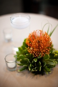 Our Cocktail Table Centerpieces Part 67