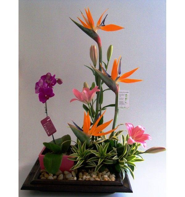 arreglos florales exoticos con gerberas - Buscar con Google