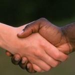 frases que invitan a humanizar a la humanidad...