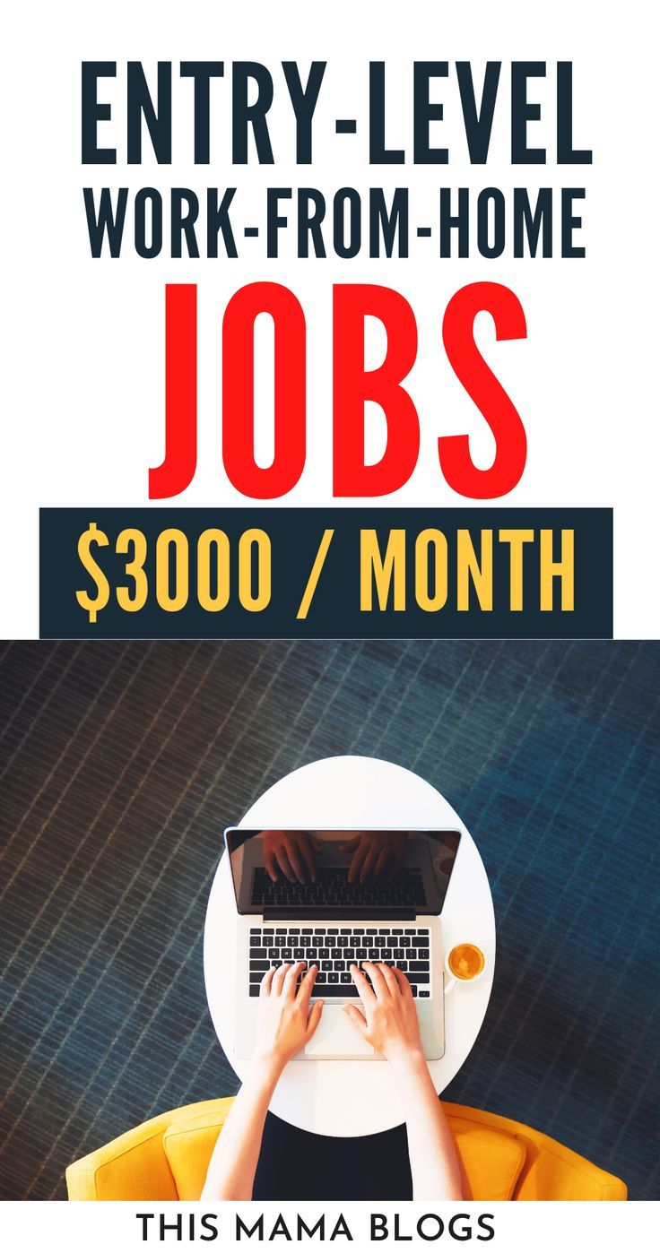 11 Entry Level Work from Home Jobs No Experience This