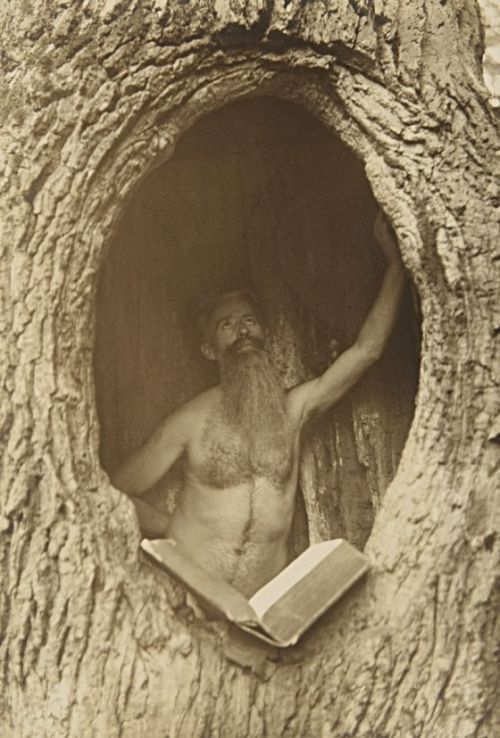 lecorpsdeshommes:Male Nude in Tree, circa 1900: