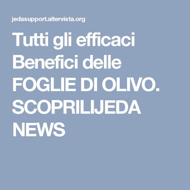 Tutti gli efficaci Benefici delle FOGLIE DI OLIVO. SCOPRILIJEDA NEWS