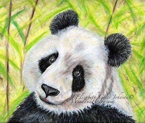 Panda in Pastel - Elizabeth Johnson Workshop opens Jan. 15 2015 Open Ended