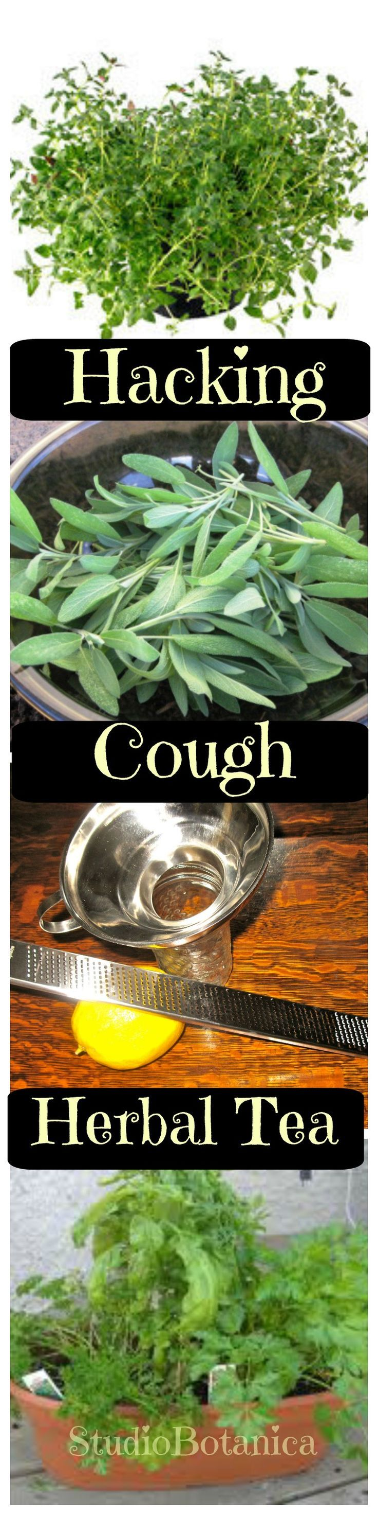 Best 25 stop coughing ideas on pinterest cough remedies for herbal tea to soothe that hacking cough ccuart Image collections