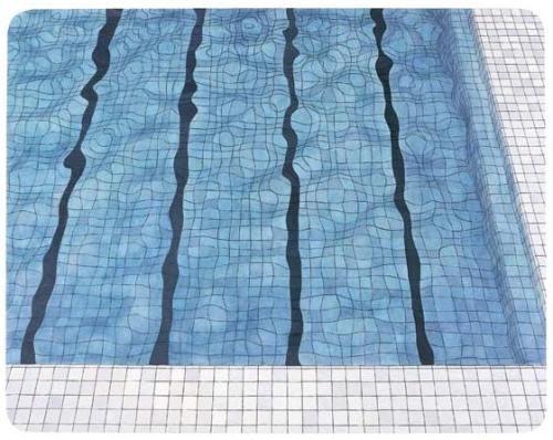 Rinko Kawauchi / Adriana Varejao Fondation Cartier Paris