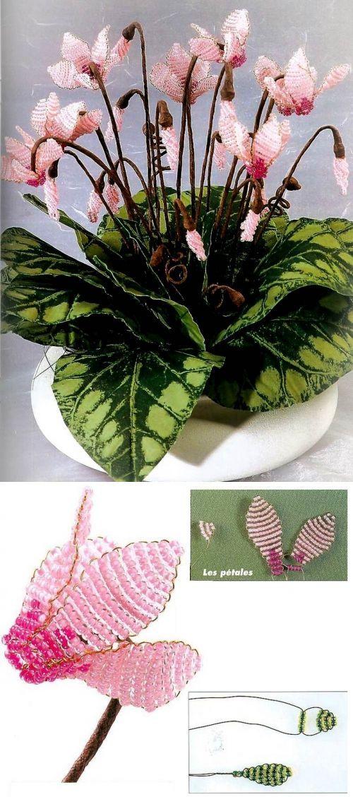 El ciclamino / las Flores / Biserok.org