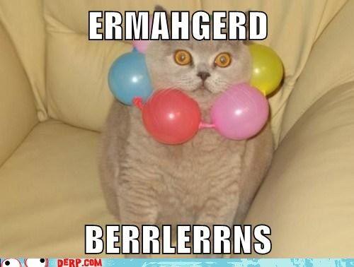 ERMAHGERDParties Animal, Funny Kitty, Funny Pics, Funny Animal Pictures, Funny Pictures, Funny Cat, Funny Photos, Funny Animal Photos, Animal Memes