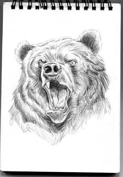 From my Sketchbook of bears