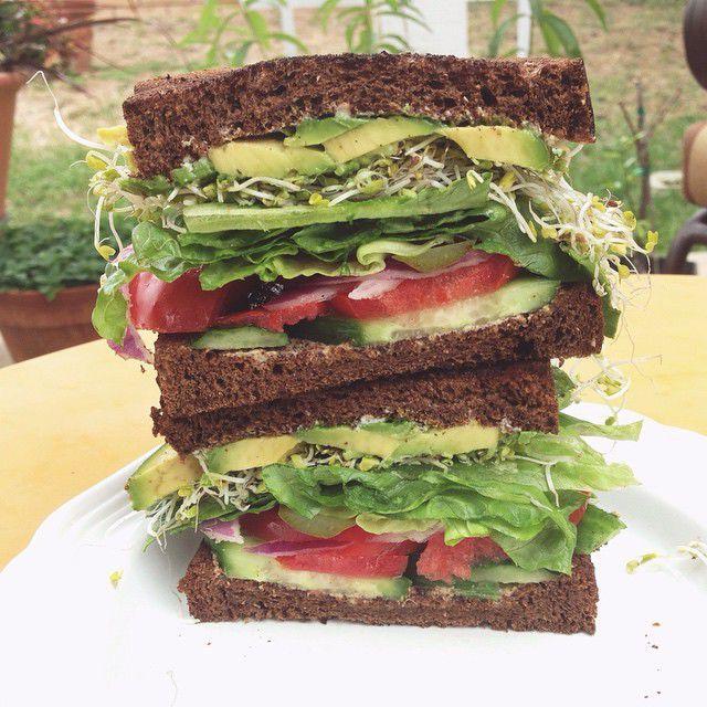 Sandwich med avocado, spirer, gulost/smøreost, tomat, agurk, rødløk/purre (bilde til inspirasjon, ikke oppskrift)