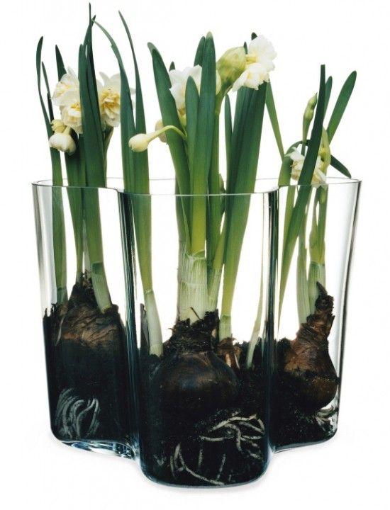 Aalto vase, den store
