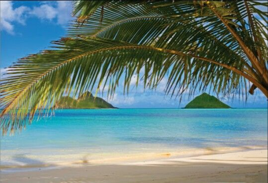 Wet sand beaches......paridise