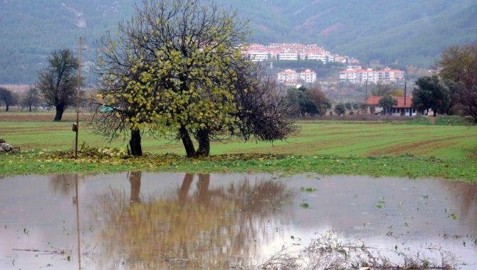Muğla'daki tarım arazileri ve zeytin bahçeleri su altında kaldı