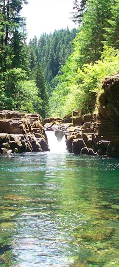 Brice Creek outside of Cottage Grove, Oregon • photo: Valapalooza on deviantart