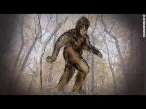 Bigfoot Hotspot Radio -  SC EP 94 Strange Bigfoot Encounters In The Woods