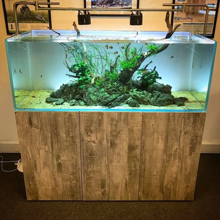 The 25 best fish tank stand ideas on pinterest tank for Pallet aquarium stand
