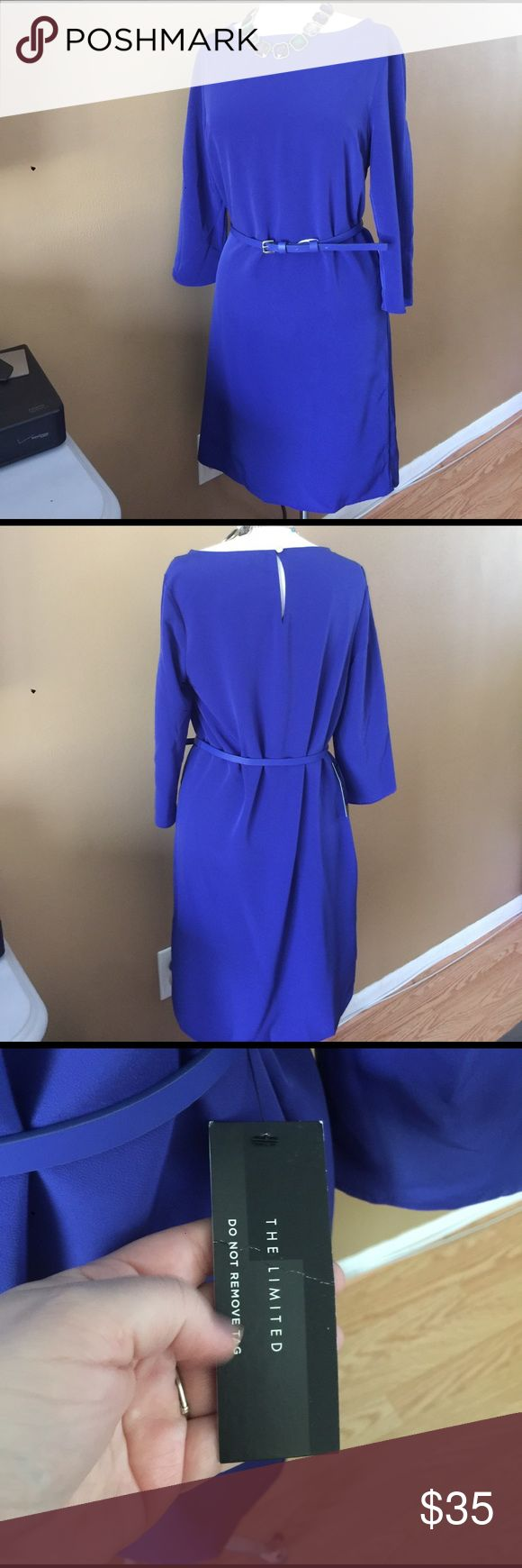 The Limited blueberry belted shirt dress Great 3/4 sleeve blueberry color shirt dress with belt. The belt has a little scuff on the inside of the belt The Limited Dresses Midi
