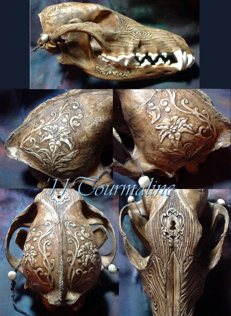 Skull carving.....not sure how I feel about pinning this being vegan but I know it is beautiful...will have to think on this a while~