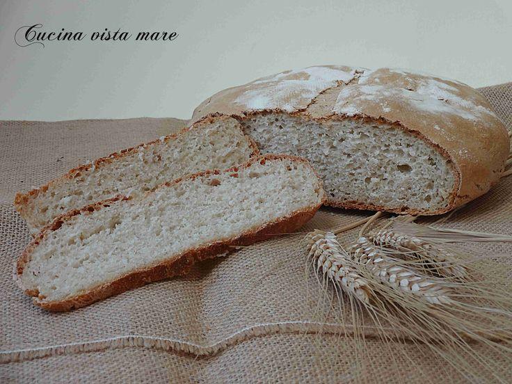 Il pane multifarine è saporito, profumato e semi integrale, buono da mangiare anche da solo nella semplicità delle merende del passato con olio e pomodoro!