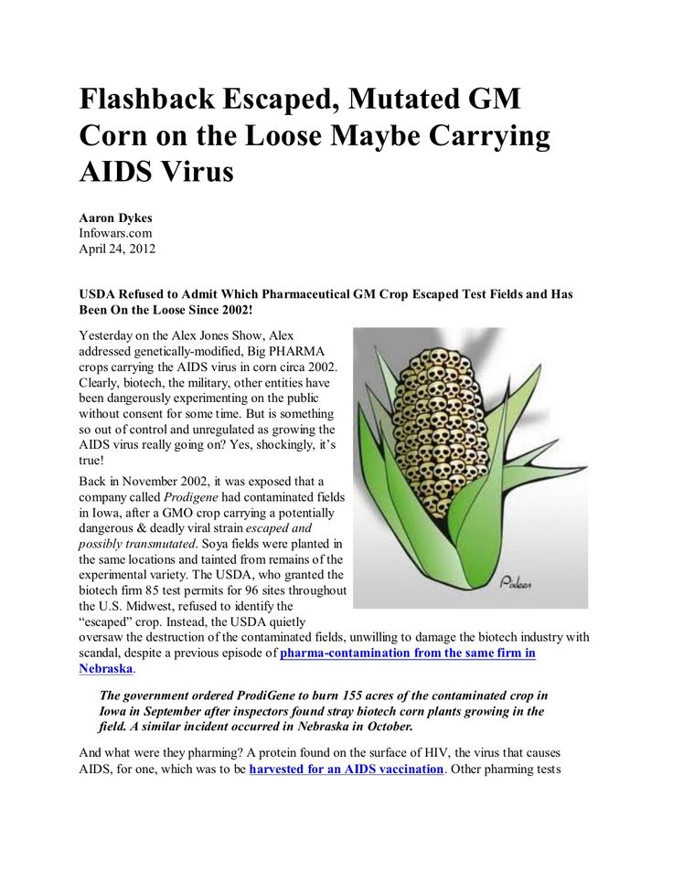 Mutated GM Corn on the Loose Maybe Carrying AIDS Virus infowars.com BECAUSE THERE'S A WAR   ON FOR YOUR MIND