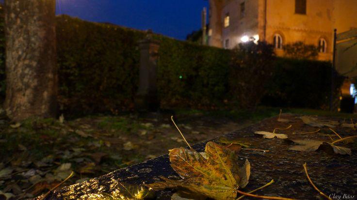 il silenzio della notte dopo la pioggia by Clay Bass on 500px