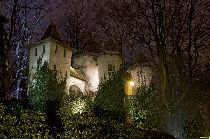 Het kasteel van Doornroosje