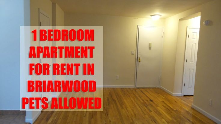 Pet friendly, 1 Bedroom apartment for rent in Briarwood, Queens NYC