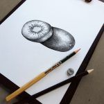 """Kiwi illustration for the illustrated series """"Hand drawn Fruit Collection"""". Graphite on paper. Digital file available for sale for commercial use here: https://crmrkt.com/8dgmy Thank you for visiting, Nado"""