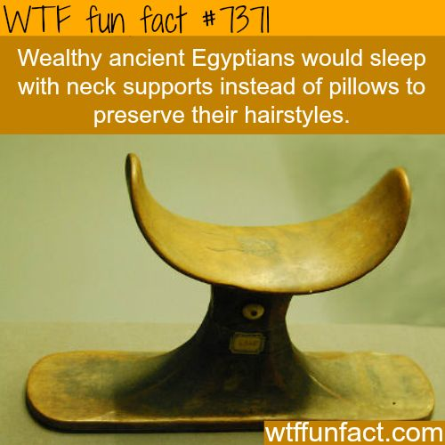 Neck supports were used instead of pillows by ancient Egyptians.. - WTF fun facts