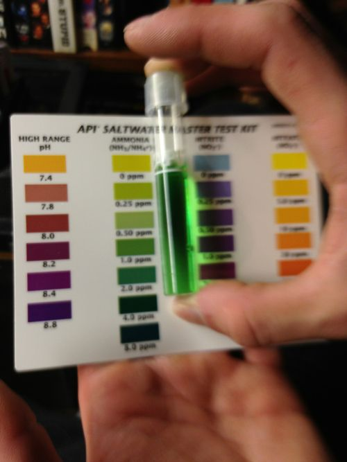 Water quality is essential to the health of your fish and your plants.  Test regularly to ensure key parameters such as pH, ammonia, nitrites and nitrates are within safe limits.