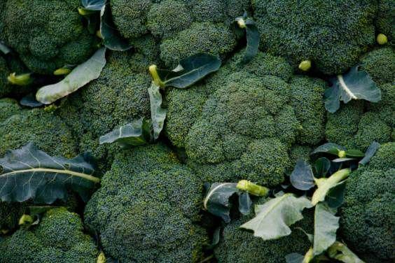 broccoli donne