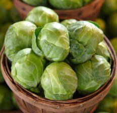 Brussels Sprouts Nutrition, Health Benefits & Recipes - Dr. Axe