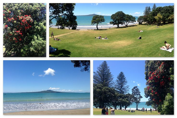 Summer in Takapuna Beach