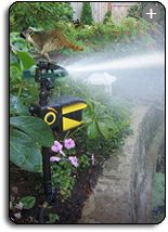 this sprinkler is for keeping animals out of your yard and it gets great reviews