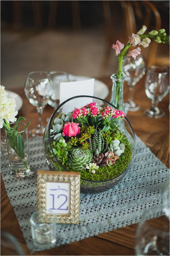 Table number and mini succulent and cactus garden centerpieces. #weddingchicks Captured By: Chaz Cruz Photography http://www.weddingchicks.com/2014/06/18/rainbow-wedding-with-a-super-cute-program-idea/