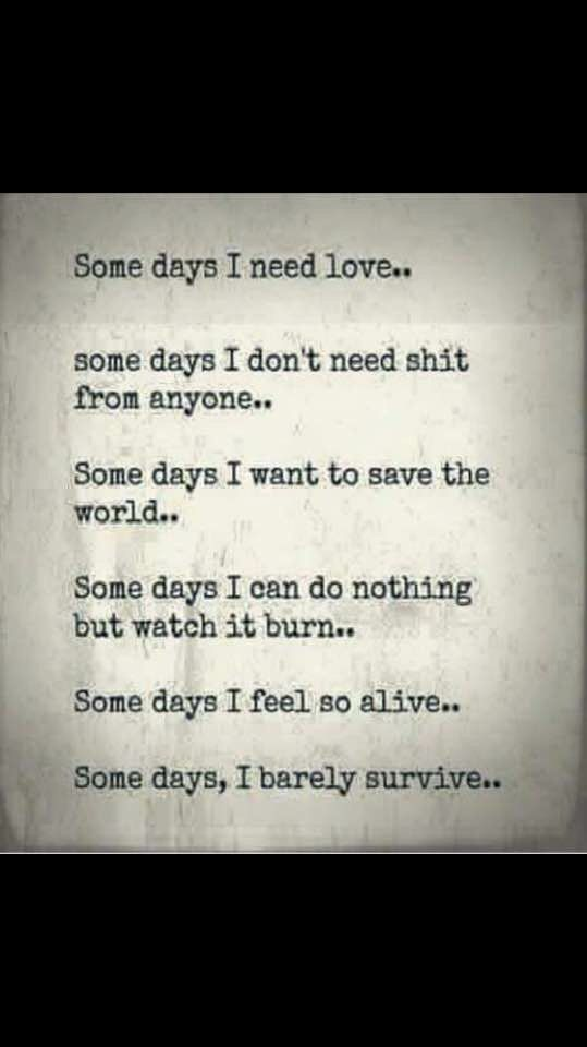 Some days I need love, some days I don't need shit from anyone..some days i want to save the world..some days I can do nothing but watch it burn..some days I feel so alive..some days, I barely survive..
