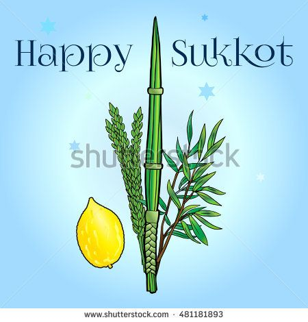 Jewish traditional four species lulav etrog for Jewish Holiday Sukkot. Vector Jewish new year. Rosh Hashanah Israel Sukkah - Buy this stock vector and ...  sc 1 st  Pinterest & 35 best Feasts: Sukkot images on Pinterest | Happy sukkot Israel ...