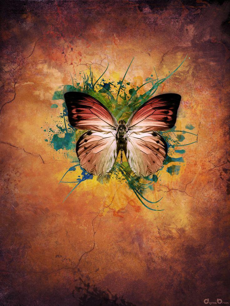 The Butterfly Effect by digitalbrain.deviantart.com on @deviantART