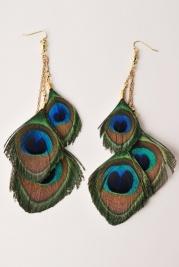 Peacock Plumage | Peacock Plume. $14