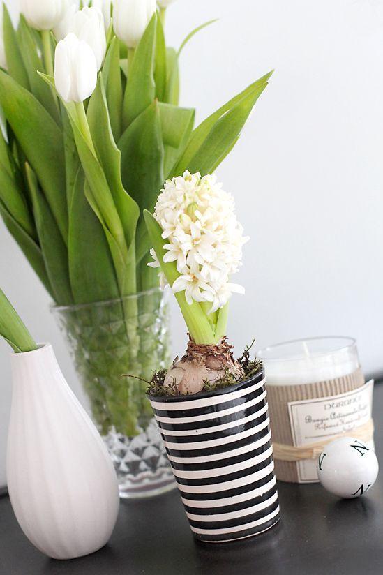 Deco floral para casa, hazlo tu misma!