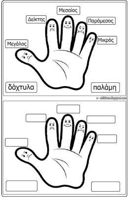 Los Niños: Η παλάμη μας και πως ονομάζονται τα δάχτυλά μας
